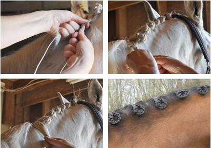 приспособление для заплетания гривы Braideez Equestrian